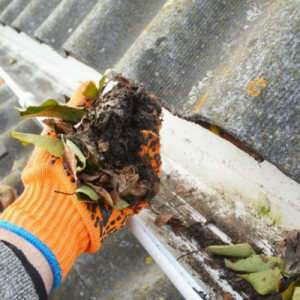 Clean gutters equals no mosquitoes!